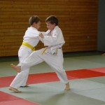 judo bis