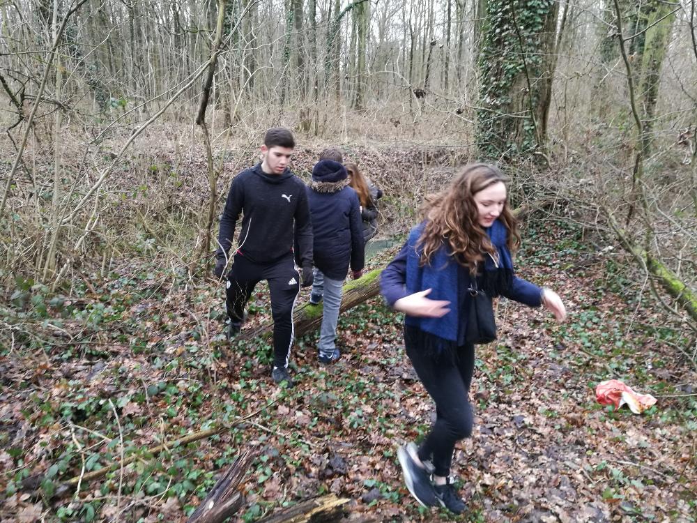 Espace ados : sortie en forêt (semaine 2)